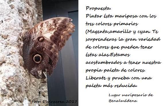 004_propuesta_Elvira.Gomez_triada-color